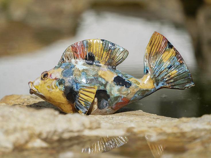 Keramik-Fisch gescheckt