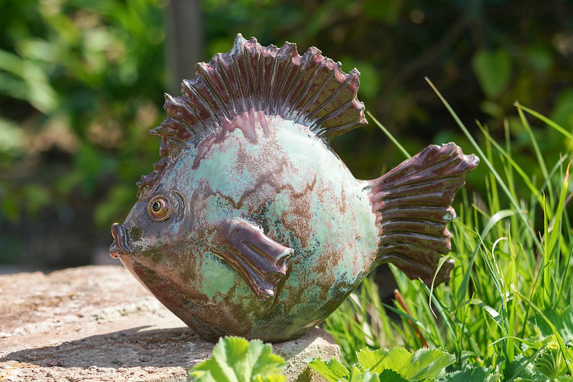 Flach-Fisch mint marmoriert