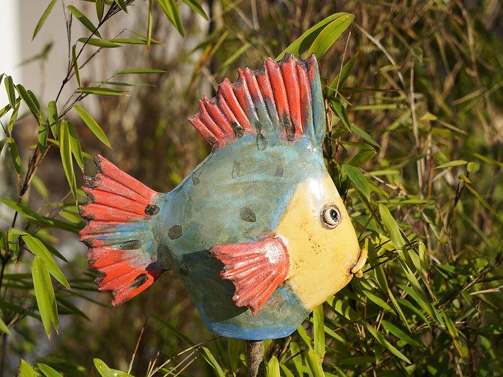 kleiner Flach-Fisch 'Jared'