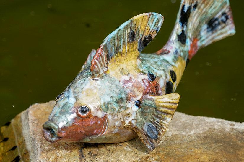 Keramik-Fisch gescheckt 03