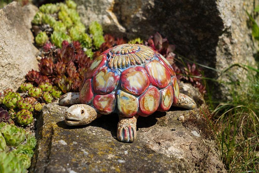 Schildkröte 'Resa'
