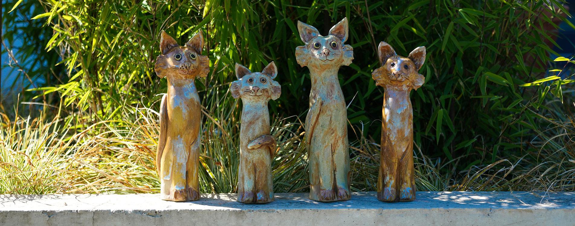 Katzen-1.jpg