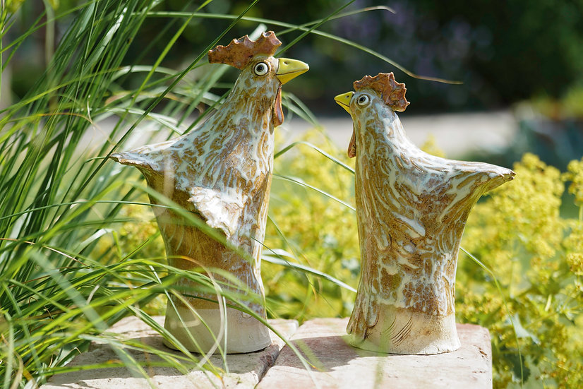 Hahn und Henne gescheckt