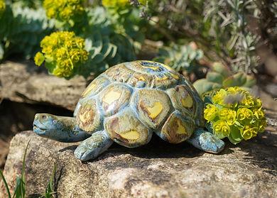 Schildkröten kaufen - Gartenkeramik