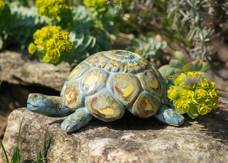 Schildkröte'Ova'