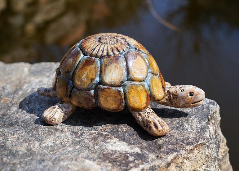 Schildkröte 'Luise'