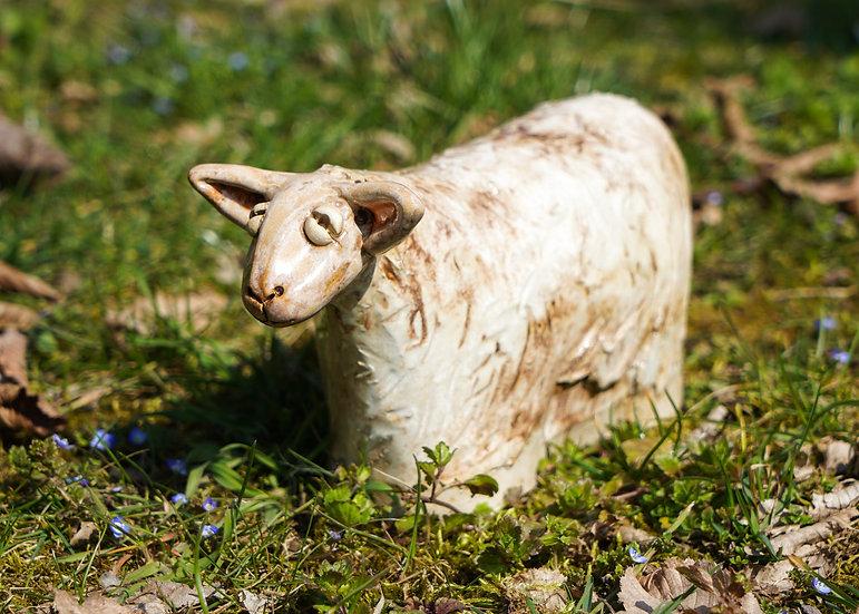 Schaf in cremeweiß