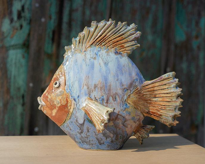 Flach-Fisch mit gezackter Flosse