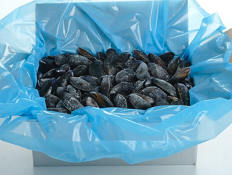 Mussels-in-Box.jpg