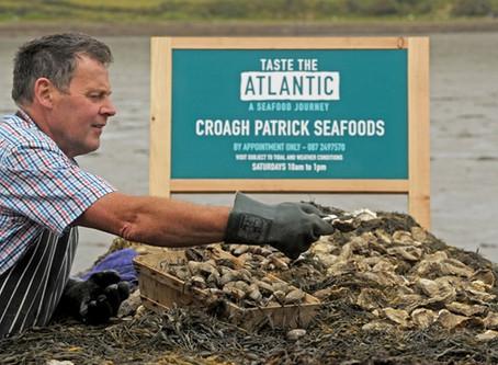 Producer Profile - Croagh Patrick Seafoods