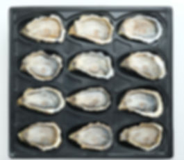 Oysters-in-Packaging.jpg