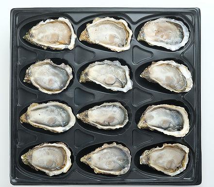 Oysters-in-Packaging.jpg