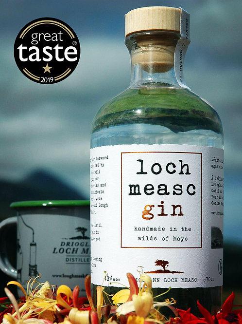 Loch Measc Gin