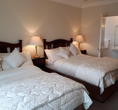 Deluxe Double or Twin Room with Garden V