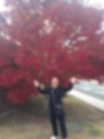 IMG-20181114-WA0006.jpg