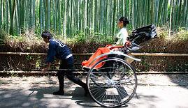 hoshinoya_kyoto_activities_5_11.jpg