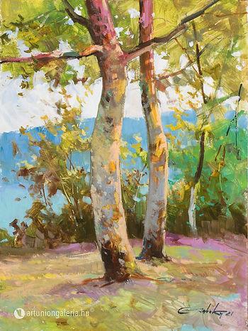 elado-festmeny-Tabaka-Tarasz-festomuvesz-Balatoni-platanfak-artunion-galeria