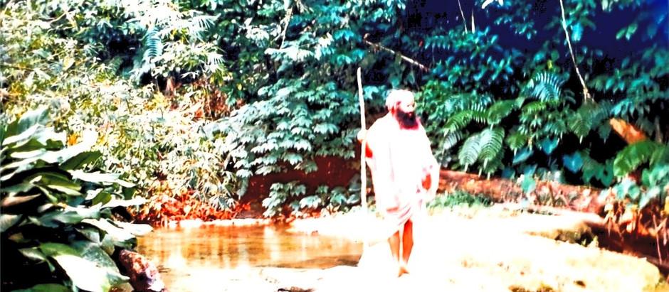 Nature and Essence of the Guru