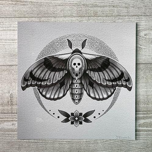 Moth - Fine Art Print