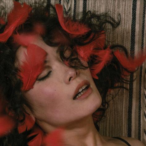 PERFORMANCE FILM - Theo Adams Company