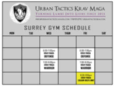 2019 Schedule Surrey UPDATE.jpg