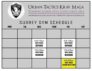 2019 Schedule Surrey UPDATE.jpg