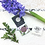 Thumbnail: Pure Anada Pressed Eye Colour - Grape