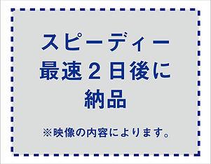 P2.jpg