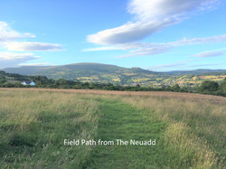 Field Path from The Neuadd