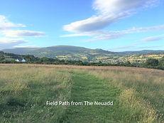 13 Field Path from The Neuadd.jpg