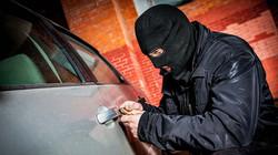 Seguridad ante la delincuencia