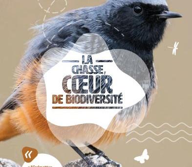 La Chasse : Cœur de biodiversité
