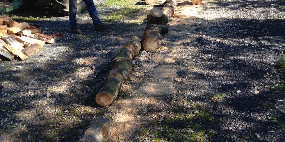 Corvées : Bois - nettoyage local - panneaux réserves