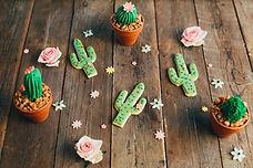Chuka cactus cookies