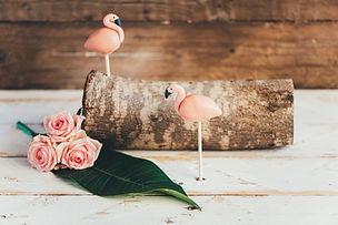 Chuka special flamingo cakepops