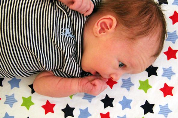 alex   newborn