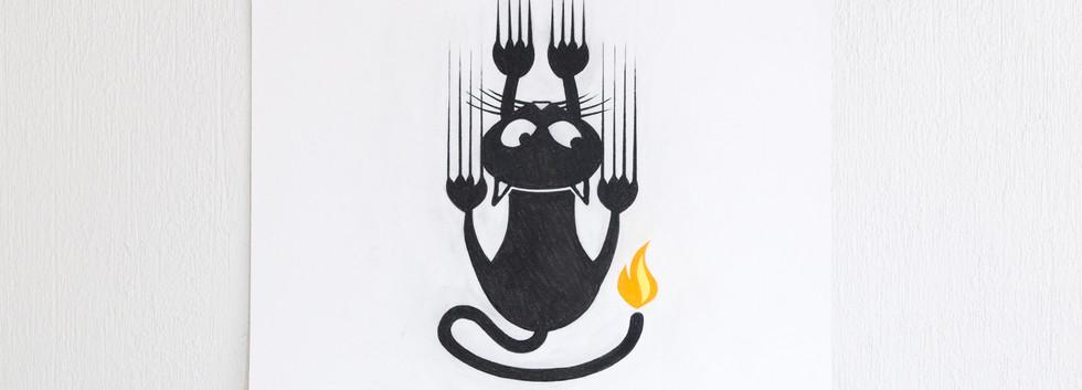 Un Gato y Una Flama