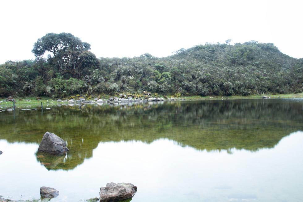 Lagoon La Verdosa
