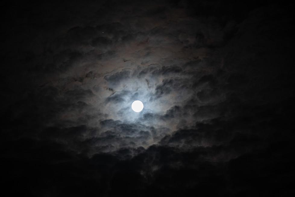 Wolf's Moon
