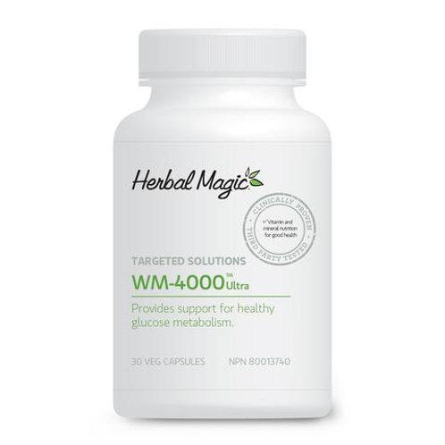 WM 4000