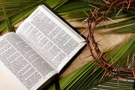 Palm Sunday3