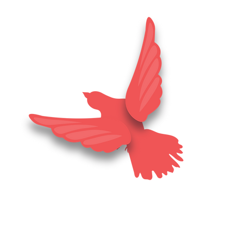 website-bird-01.png