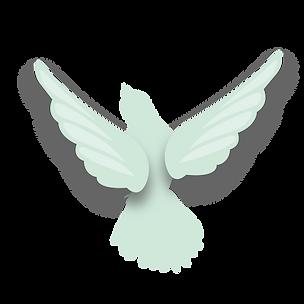 webiste-bird3-01.png