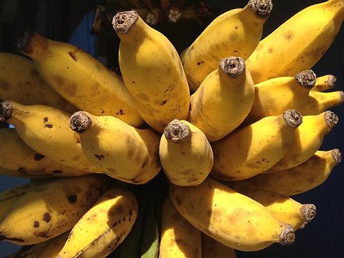 Dried apple bananas, organically grown, 4 oz