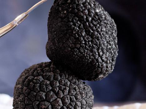 In truffles we trust...