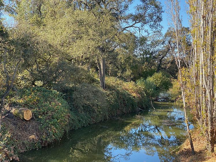 North Petaluma River.jpg