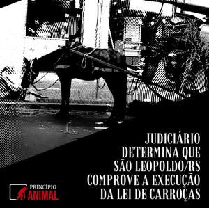 Judiciário Determina que São Leopoldo/RS Comprove a Execução da Lei de Carroças