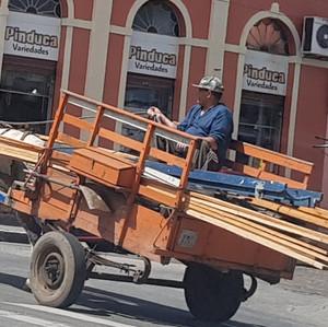 PELOTAS PARA OS CAVALOS ESCRAVIZADOS EM CARROÇAS