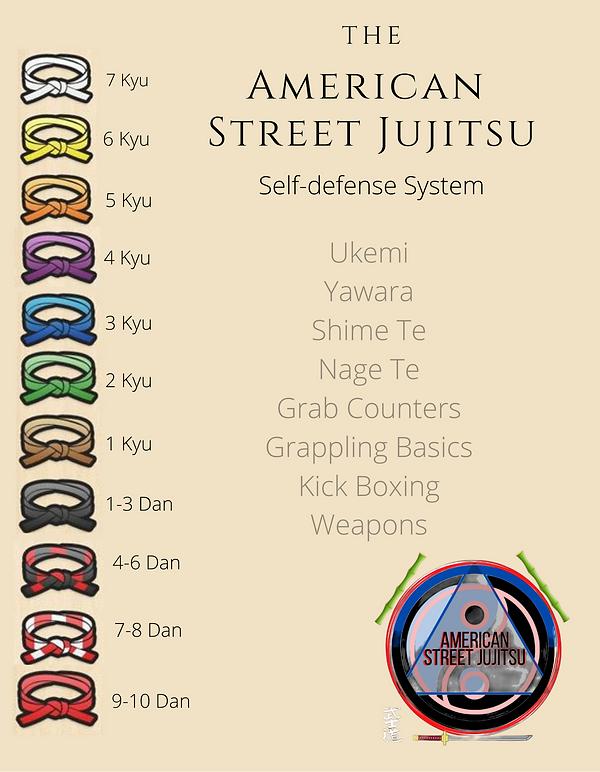 American Street Jujitsu copy 5.png
