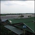 masagana_Top-View-of-Laying-House.jpg